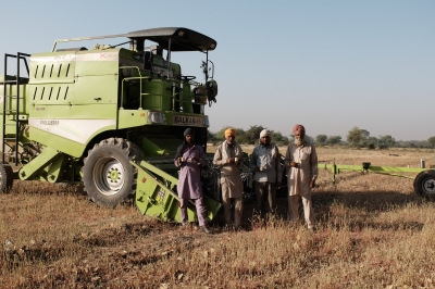 Harvesters from the Punjab